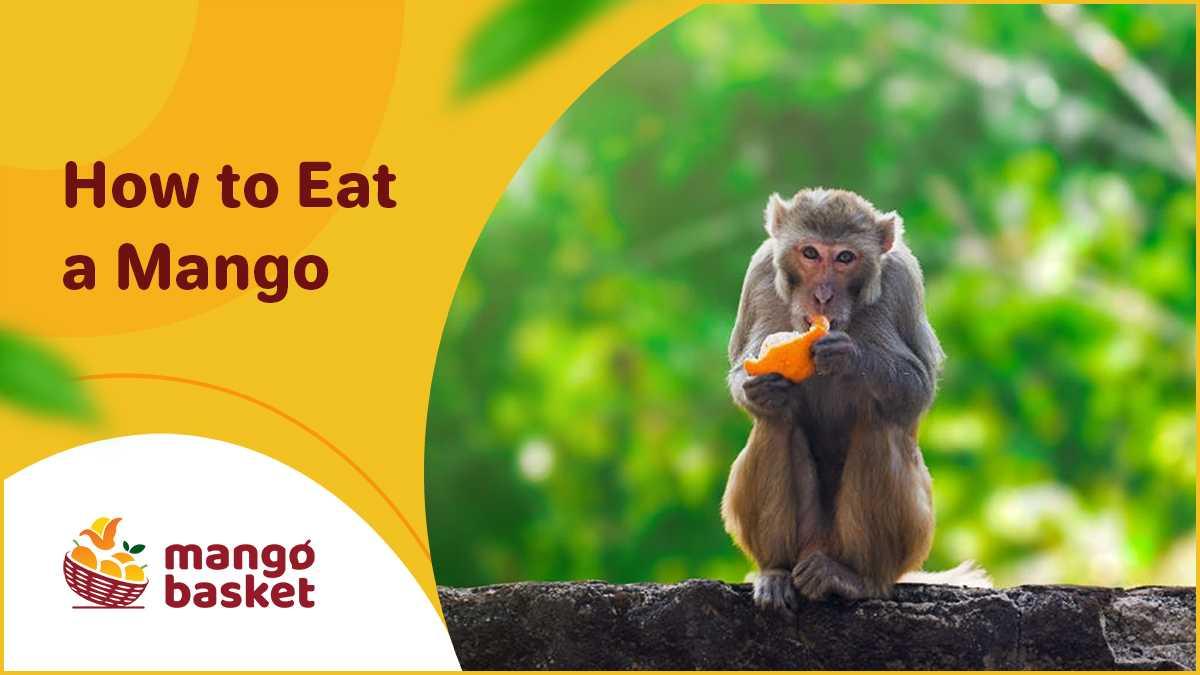 Eat a Mango