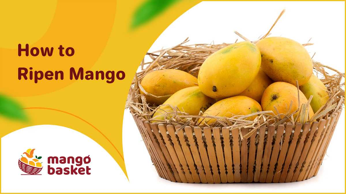 How to Ripen Mango