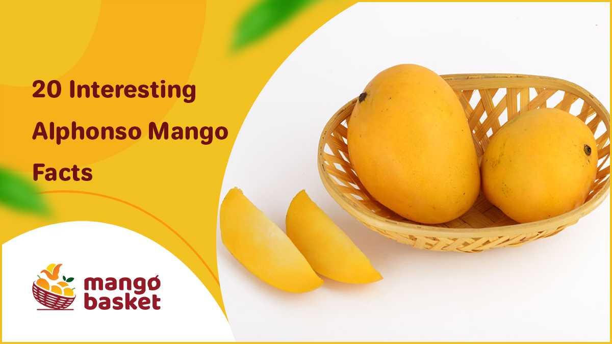 Mango Facts