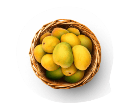 Devgad Mango