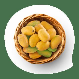 Langra/Langda Mango