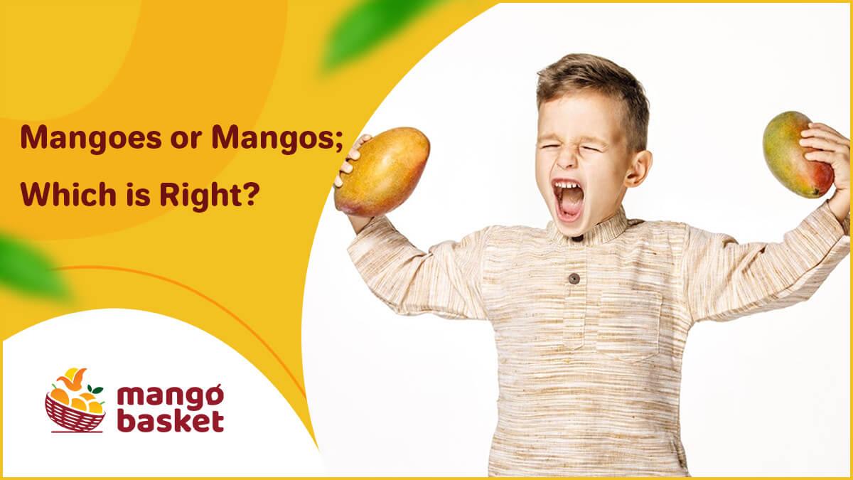 Mangoes or Mangos