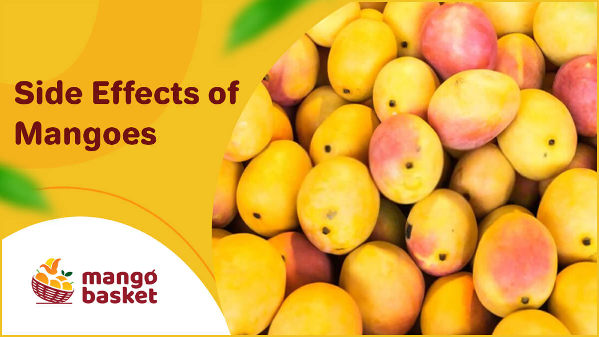 Side Effects of Mangoes